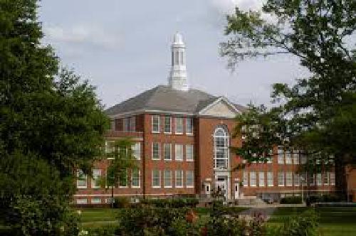 Louisiana Tech University Top Online Health Informatics Degree